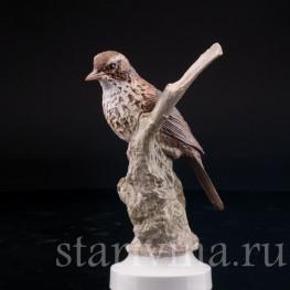 Фарфорвая статуэтка птицы Певчий дрозд, Англия, вт. пол. 20 в.